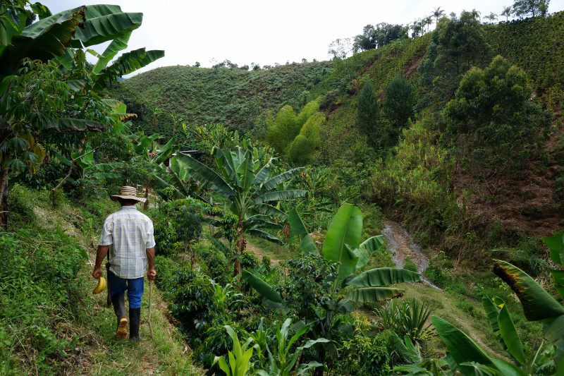 sustainable-water-fund-colombia-image-1